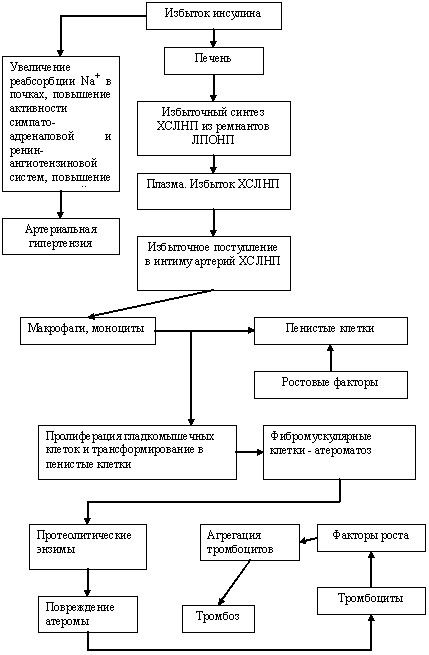 Анализ крови норма у женщин таблица сахар холестерин